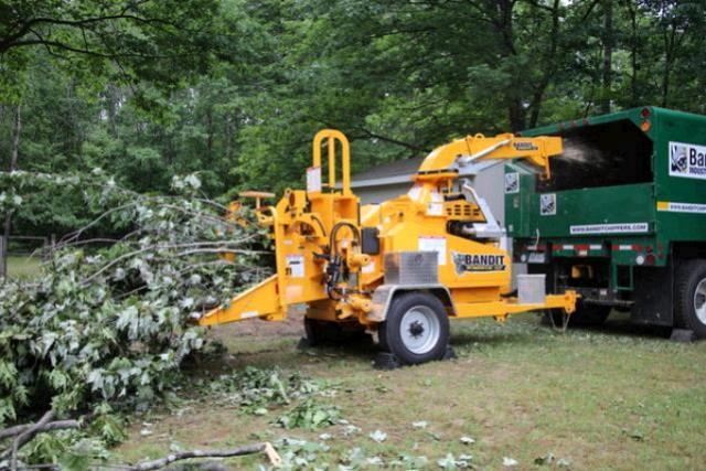 12 Inch Brush Chipper Rentals Kingsport Tn Where To Rent