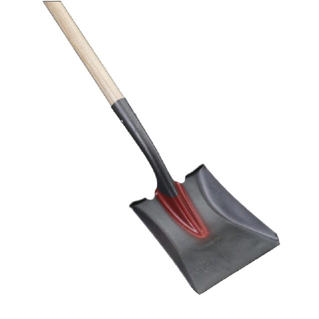 Where to find SQUARE SHOVEL in Kingsport