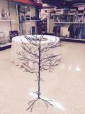 Rental store for TREE,BROWN IRON ,  3.5 ,4.0 , 4.5 in Kingsport TN