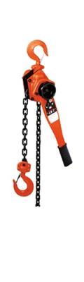 Rental store for HOIST,3 TON COME-A-LONG  CHAIN HOIST in Kingsport TN